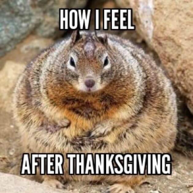 Thanksgiving Day Meme