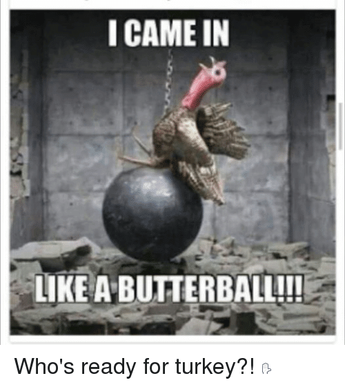 Thanksgiving Turkey Meme